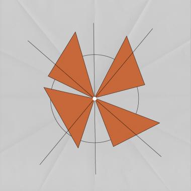 Scheda di approfondimento: multipotenziale randomico