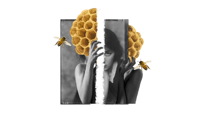 Scrivere di paura con le api nella testa